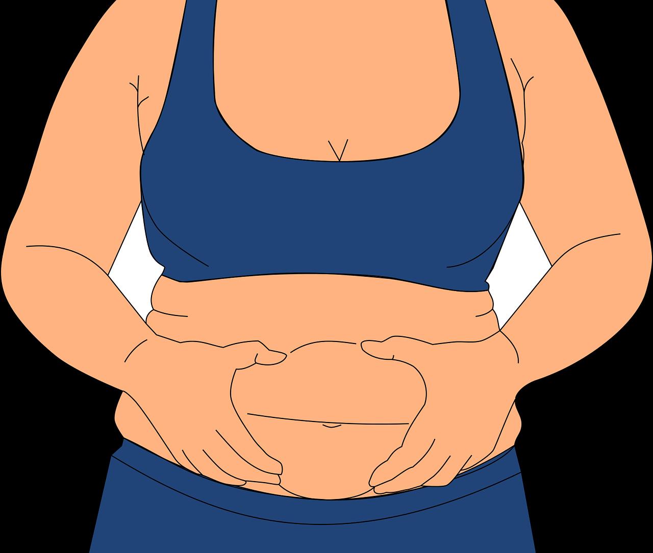 肥満体型の人がお腹を摘んでいる絵